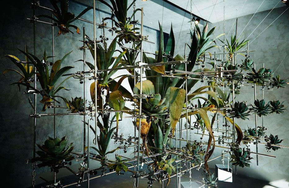 Botanical Sculpture #6 Dance by Makoto Azuma