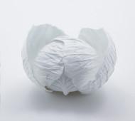 Cabbage Bowl by Yasuhiro Suzuki