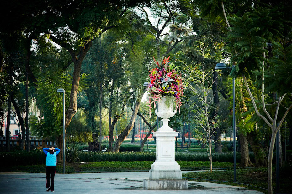 Flower Decoration in Mexico City by Makoto Azuma