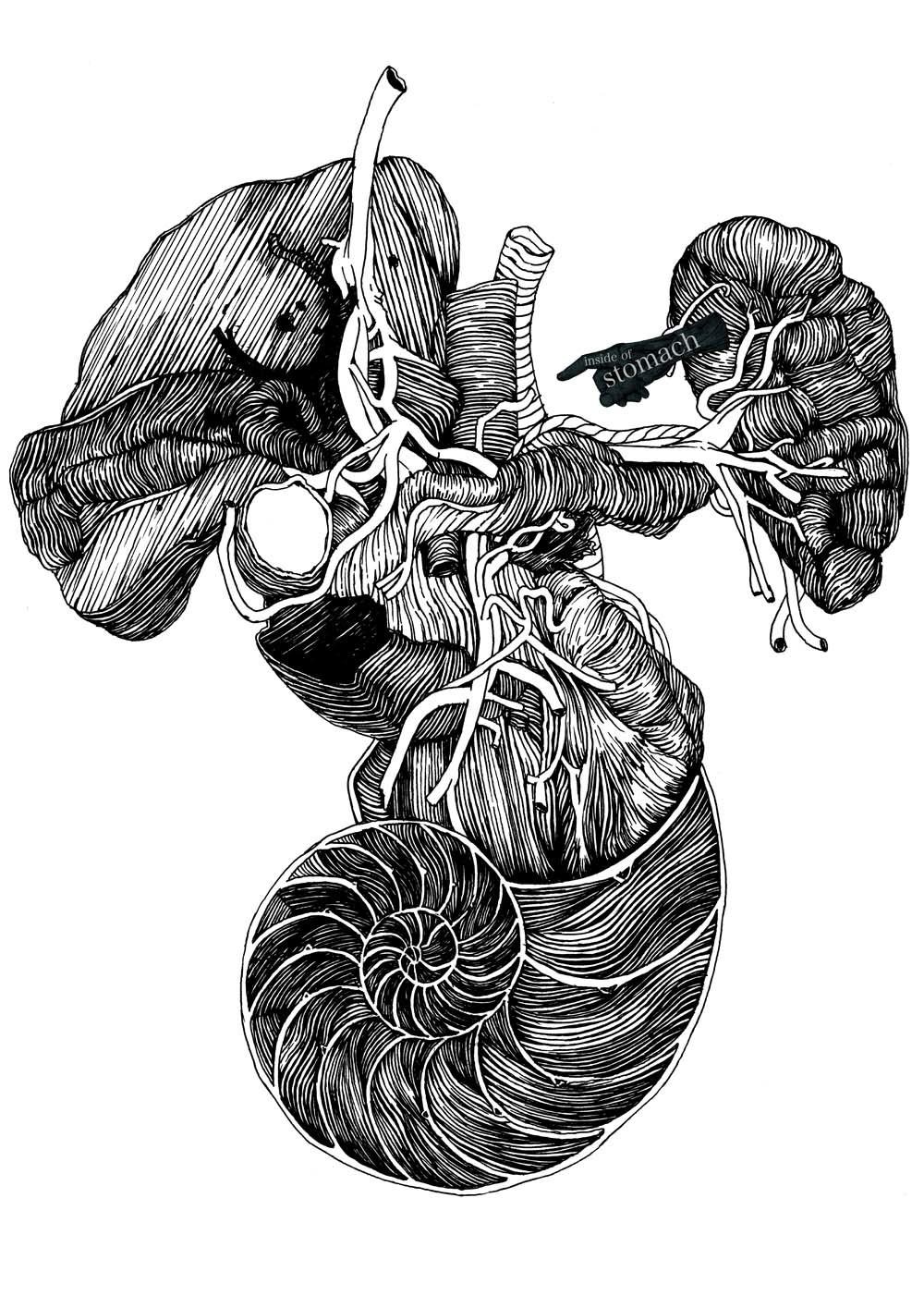Body - illustration by Wataru Yoshida