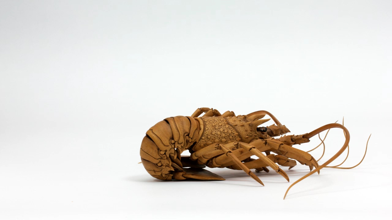 Wooden lobster by Ryousuke Ohtake